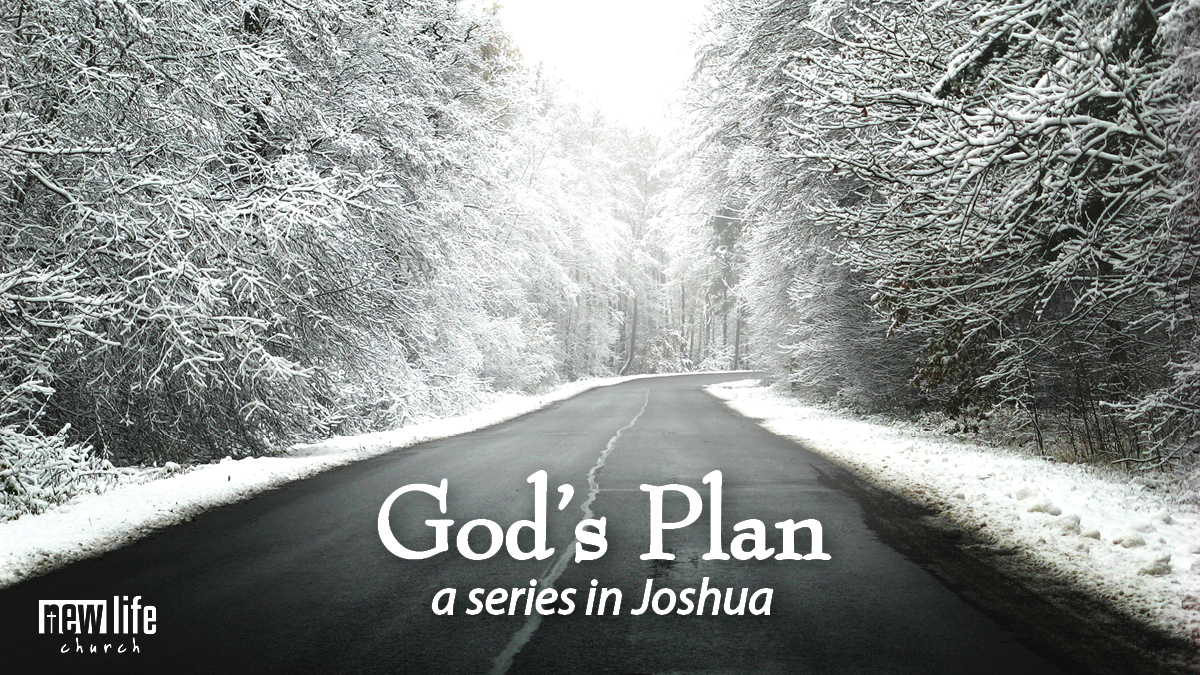 God's Plan - Conflict, Resolution, and Unity